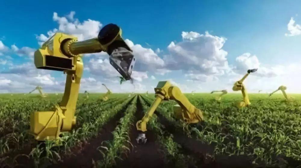 德国现代农业为何走在世界前列?农业的根本出路又是什么呢?
