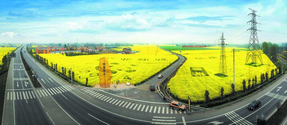 成都:乡村振兴赋新能 城乡融合聚强势