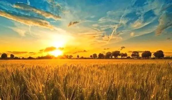 现代农业产业园如何做好三产融合?