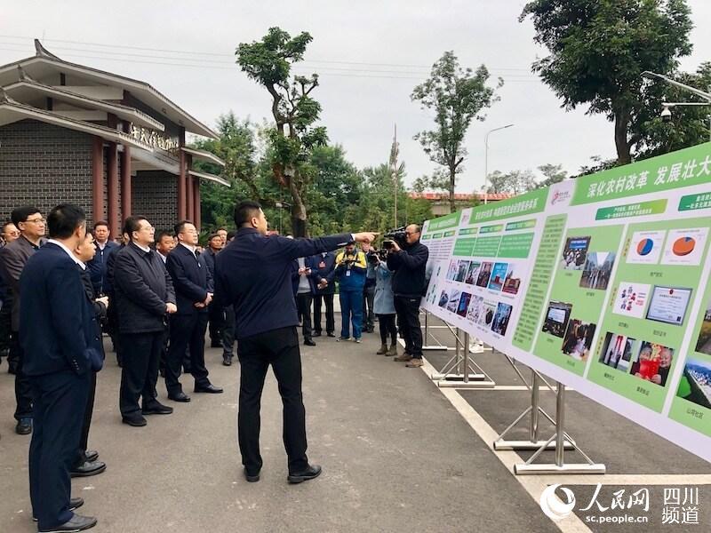 增强农业农村发展动力活力 四川省农村改革推进会召开