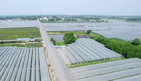 大邑安仁都市现代农业产业园
